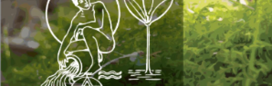 Assemblea Generale Ordinaria Associazione Amici del Villaggio Verde 2017